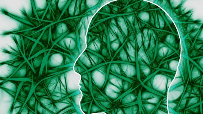 https://pixabay.com/en/neural-pathways-artistically-think-221718/